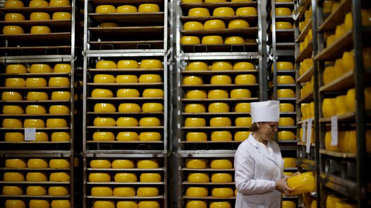 Россельхознадзор запретил ввоз в РФ небезопасных сыров из Беларуси