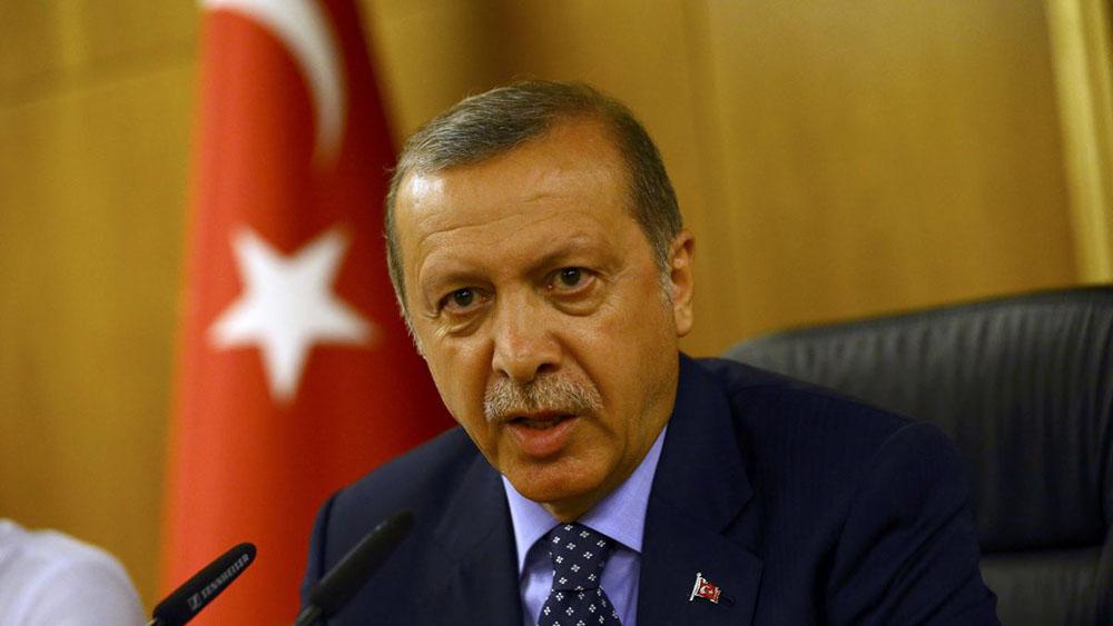 Эрдоган пообещал «дать указания», чтобы турецкие корабли не входили в порты Крыма