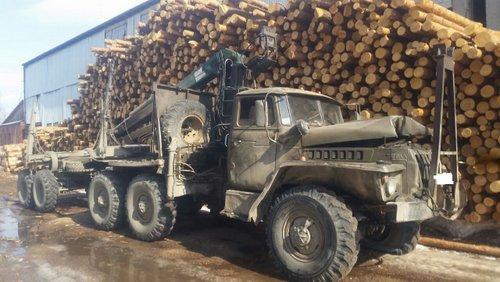 Пьяный мужчина на угнанном лесовозе врезался в газопровод в Ревде Свердловской области