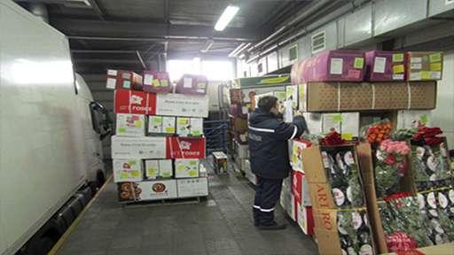 Сотрудники гродненской таможни отметили увеличение случаев незаконного провоза цветов через границу с Литвой