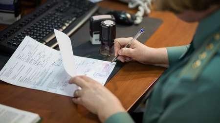 Белорусский дальнобойщик предъявил сотрудникам таможни поддельные документы