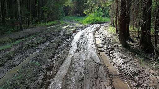 В 234 населенных пунктах Республики Коми отсутствуют дороги с твердым покрытием