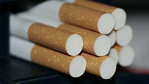 Груз с контрабандными сигаретами задержали сотрудники ФСБ
