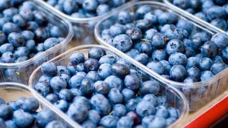 ЕСужесточает правила ввоза дикорастущих ягод изРоссии