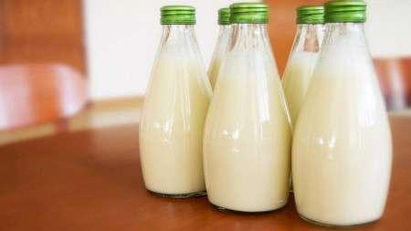 Лицензии наимпорт молочной сыворотки вРоссию начнут выдавать с20декабря