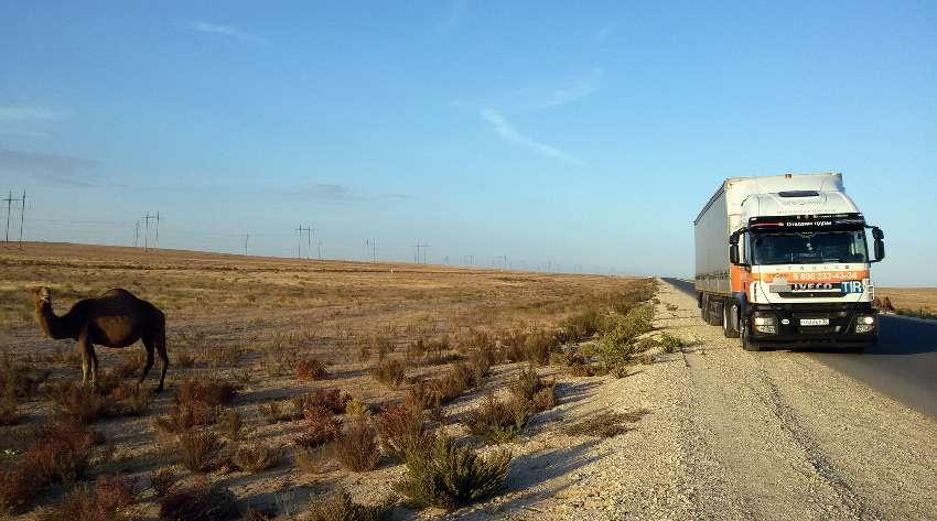 В Узбекистане запускают систему слежения за товарами и транспортом с помощью электронных пломб
