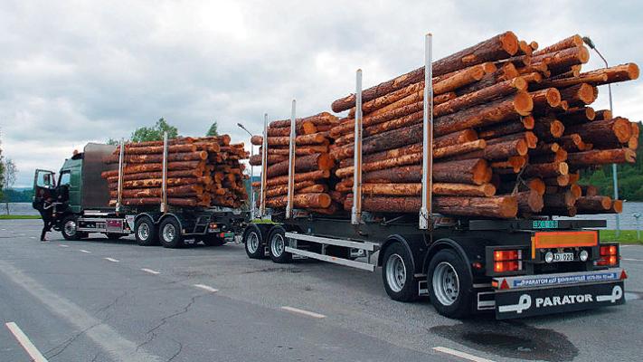 Контроль за вывозом пиломатериалов за пределы таможенной территории Евразийского экономического союза усилен